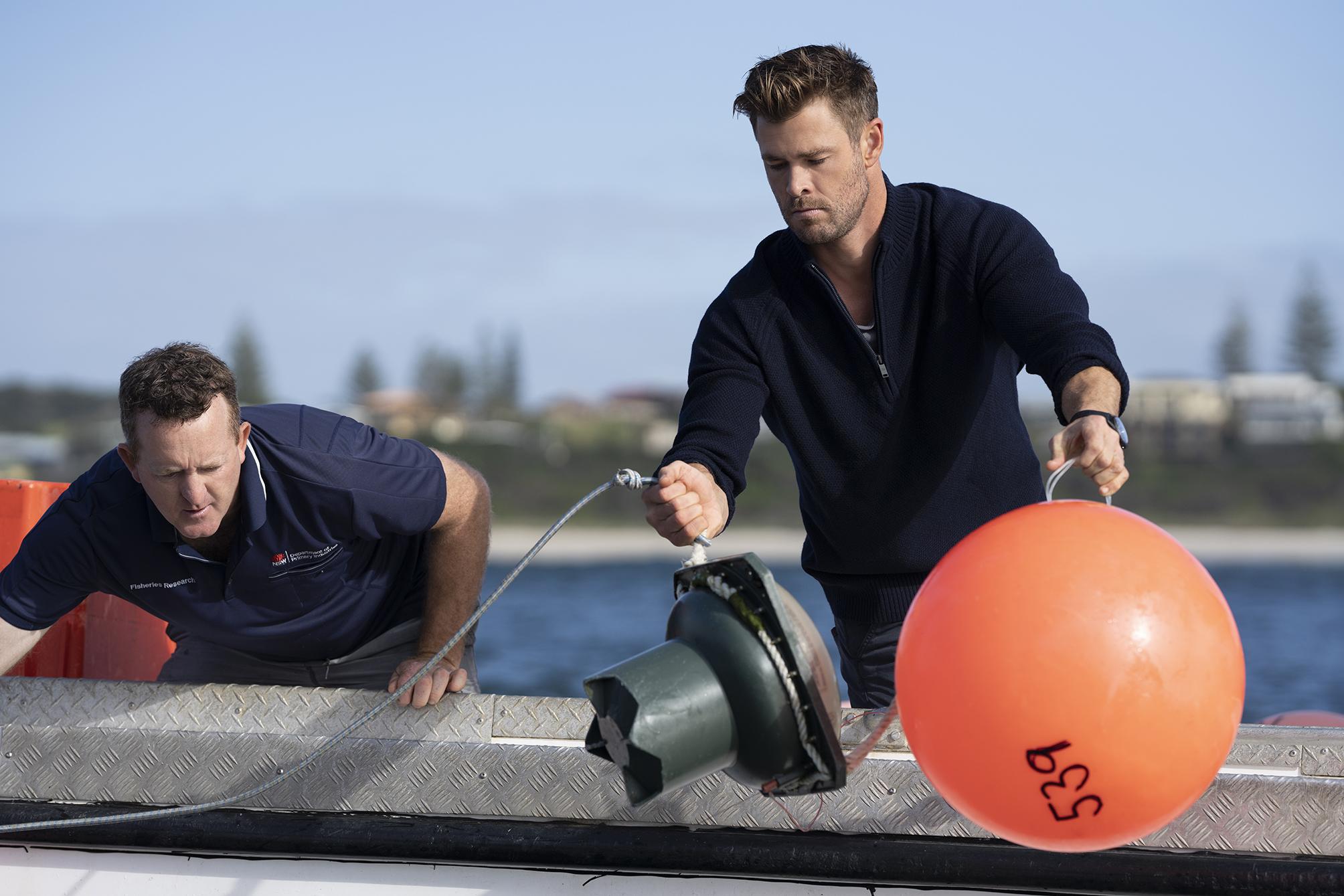 Chris Hemsworth monitorea tiburones.