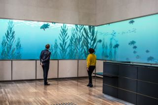 Digital Signage Turns Boston Lobby into Aquarium