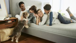 Best mattress online 2021: A family and their pet dog play on a comfy new mattress
