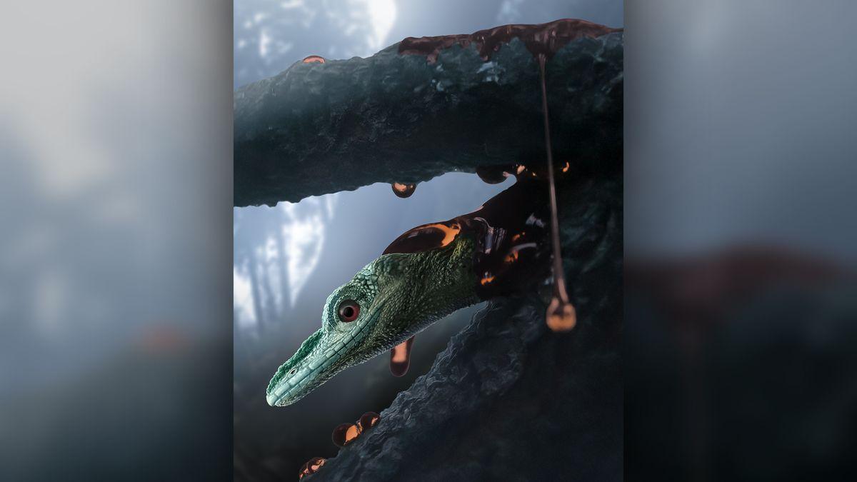 'Strange beast' in amber is a very weird lizard – Livescience.com