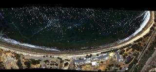 Tar Balls on California Beach