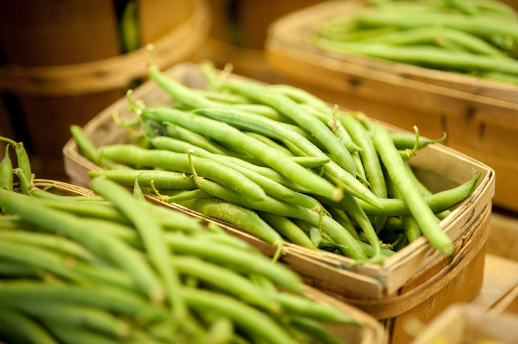 How to grow runner beans: it's easy with our step-by-step guide