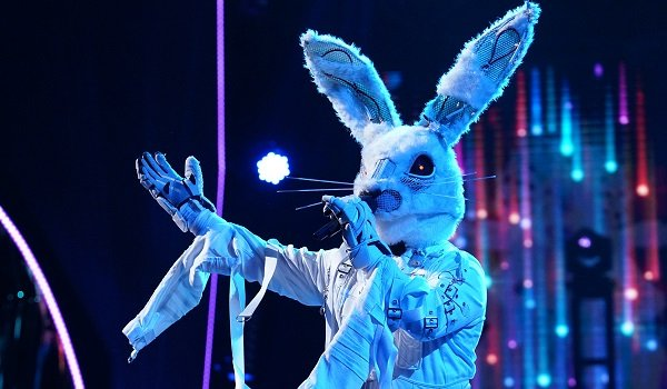The Rabbit The Masked Singer Fox
