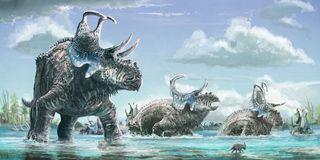 illustration of the new horned dinosaur