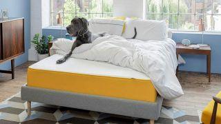 Prime Day mattress deals