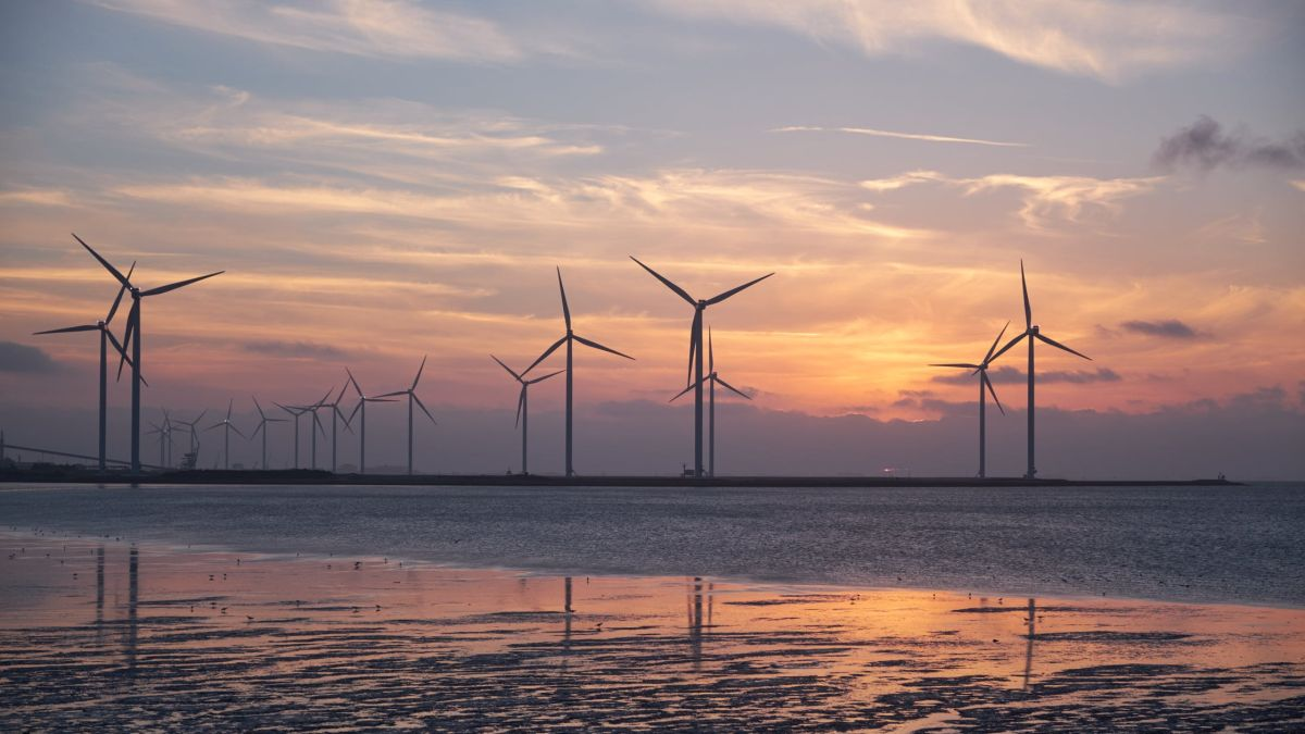 Image of article 'Energy news round-up: National Grid's profit warnings, offshore wind wins out against nuclear, and more'