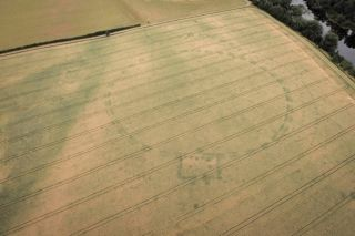Crop marks caused by warm weather have revealed an buried henge monument in a field to the south of Newgrange.