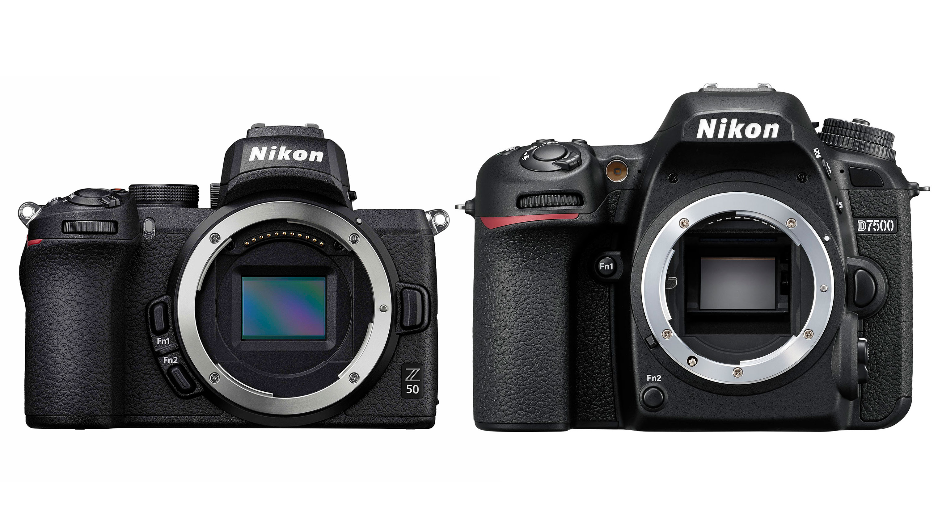 Nikon Z 50 vs Nikon D7500 | Digital Camera World