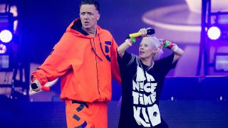 Riot Fest is the latest festival to drop Die Antwoord after 2012 video surfaces showing an altercation between the band's Ninja and Hercules and Love Affair's Andy Butler