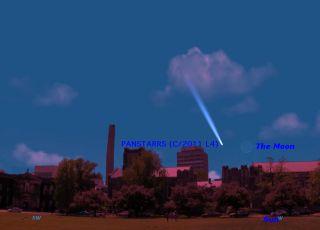 Comet Wainscoat