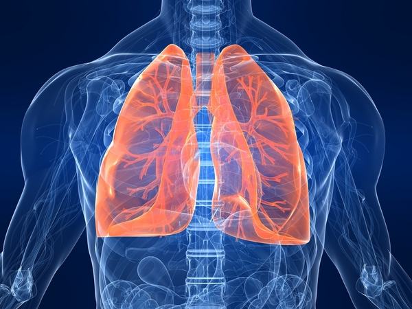 Do Smokers Lungs Heal After They Quit Live Science