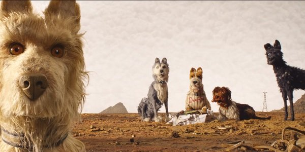Isle of Dogs Alphas scrounging