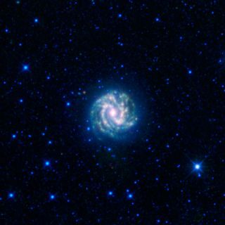 Southern Pinwheel Galaxy Shines In New Photo