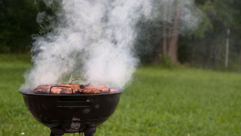 Food cooking on a charcoal bbq