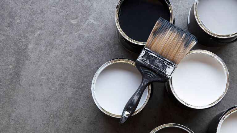 best paint deals: lifestyle image of paint pots and paintbrushes from rockett st george