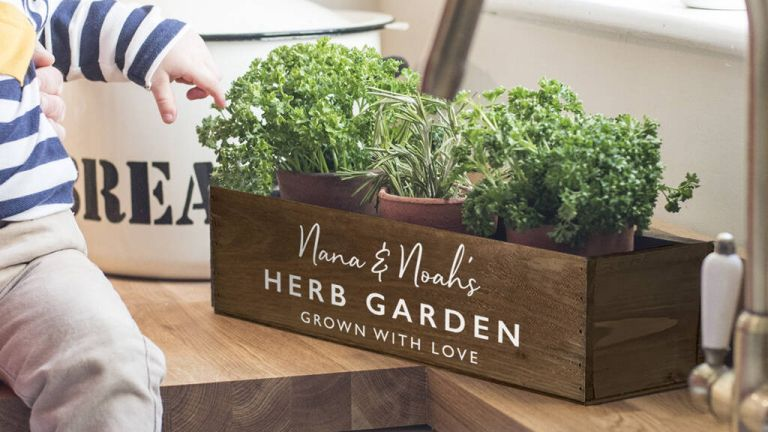 Gifts for gardeners: Delightful Living Personalised Herb Garden Box in kitchen