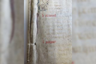 "The words ""bel accueil"" on a parchment fragment tipped off medieval expert Marianne Ailes that this was a copy of the famous French poem ""La Roman de la Rose."""
