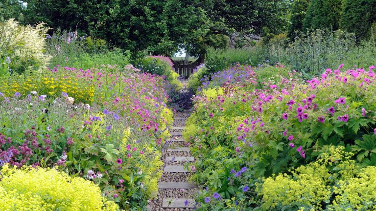 stepping stone ideas: pathway through flowing borders
