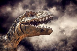 Is It Possible To Clone A Dinosaur Live Science