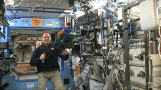 Space Christmas tree on the International Space Station with astronaut Kevin Ford.