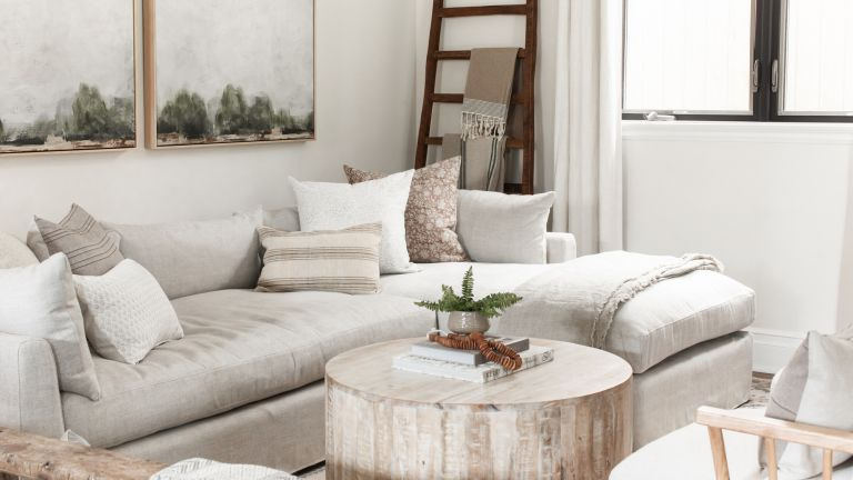 A living room with pale grey sofa, landscape wall paintings, tree trunk coffee table and dark wooden ladder feature