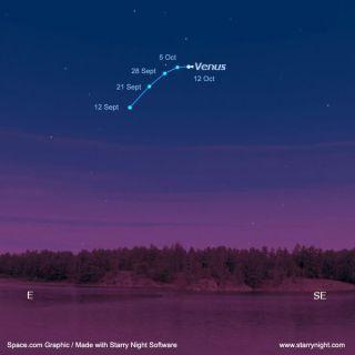 Brilliant Venus: Spot the Morning Beacon