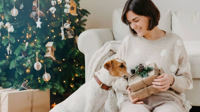 Best Christmas gifts for dog lovers: Dog at Christmas