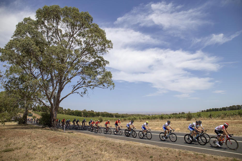 Watch: Tour Down Under 2019 stage one highlights