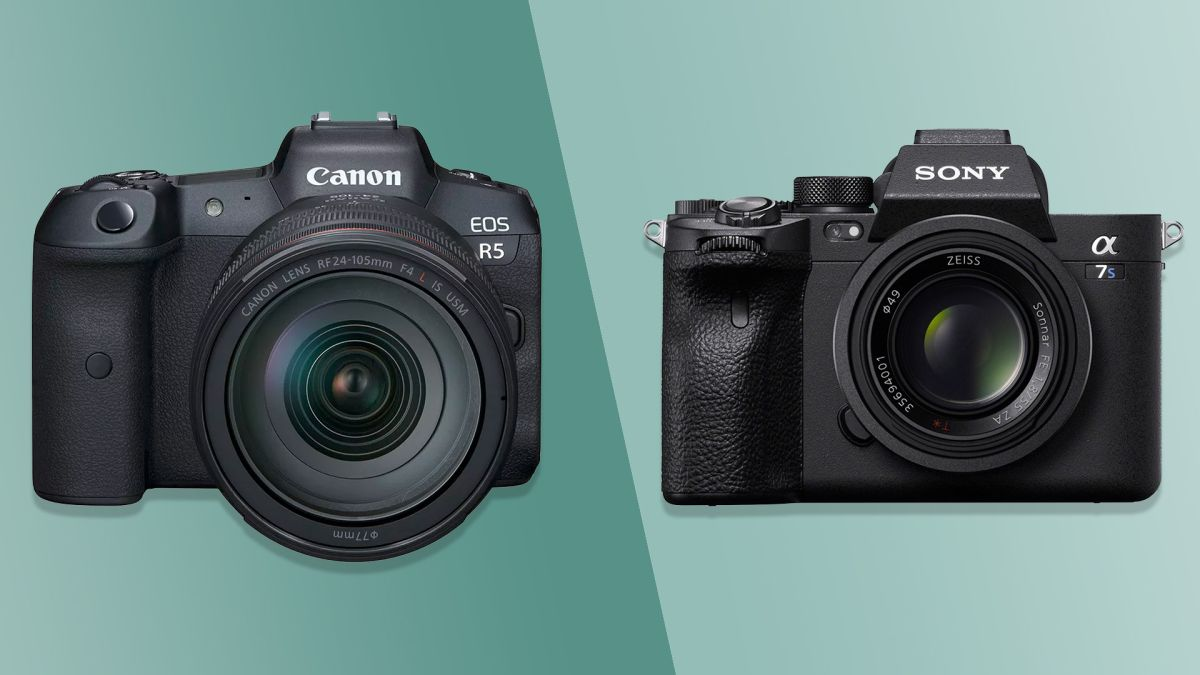 Sony A7S III vs Canon EOS R5: which is the best camera for you? - TechRadar
