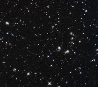 Star-forming galaxies in Pegasus