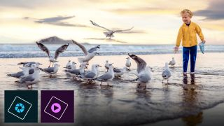 Sensei-tional! Photoshop and Premiere Elements 2021 receive raft of updates