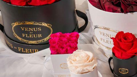 Venus et Fleur review