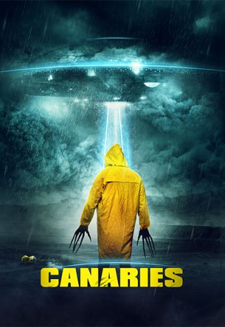 Canaries Peter Stray poster