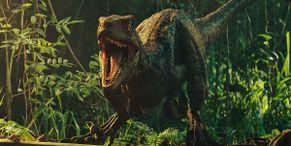 Surprise, Jurassic World: Dominion Is Still Adding Cast Members
