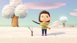 Animal Crossing: New Horizons shovel