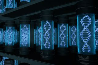 containers with DNA molecules inside.