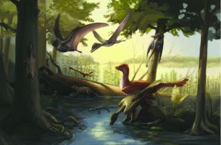 Here, a reconstruction of the Daohugou fauna featuring feathered dinosaurs, pterosaurs, early mammals and amphibians among others.