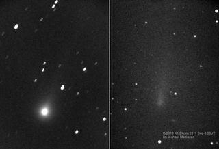 comet elenin mattiazzo fading imagery
