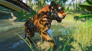 Planet Zoo tips