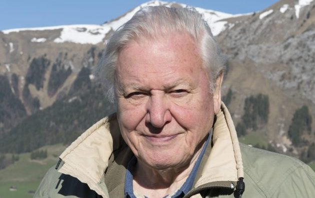 Sir David Attenborough Planet Earth Ii Is 39 Two Way