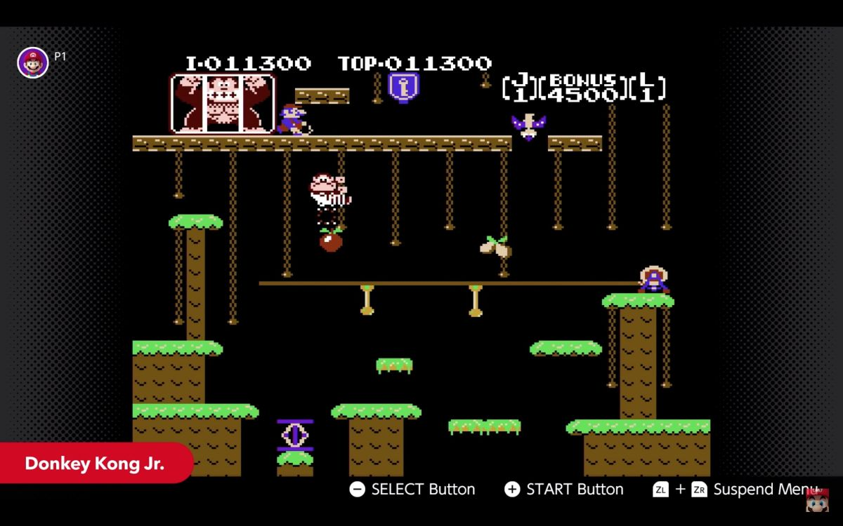 Donkey Kong Jr headlines May's Nintendo Switch online game line-up