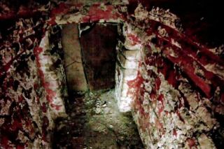 Mayan Temple XX