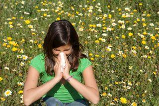 allergies, hay fever
