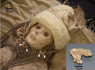 mummy found with ancient cheese
