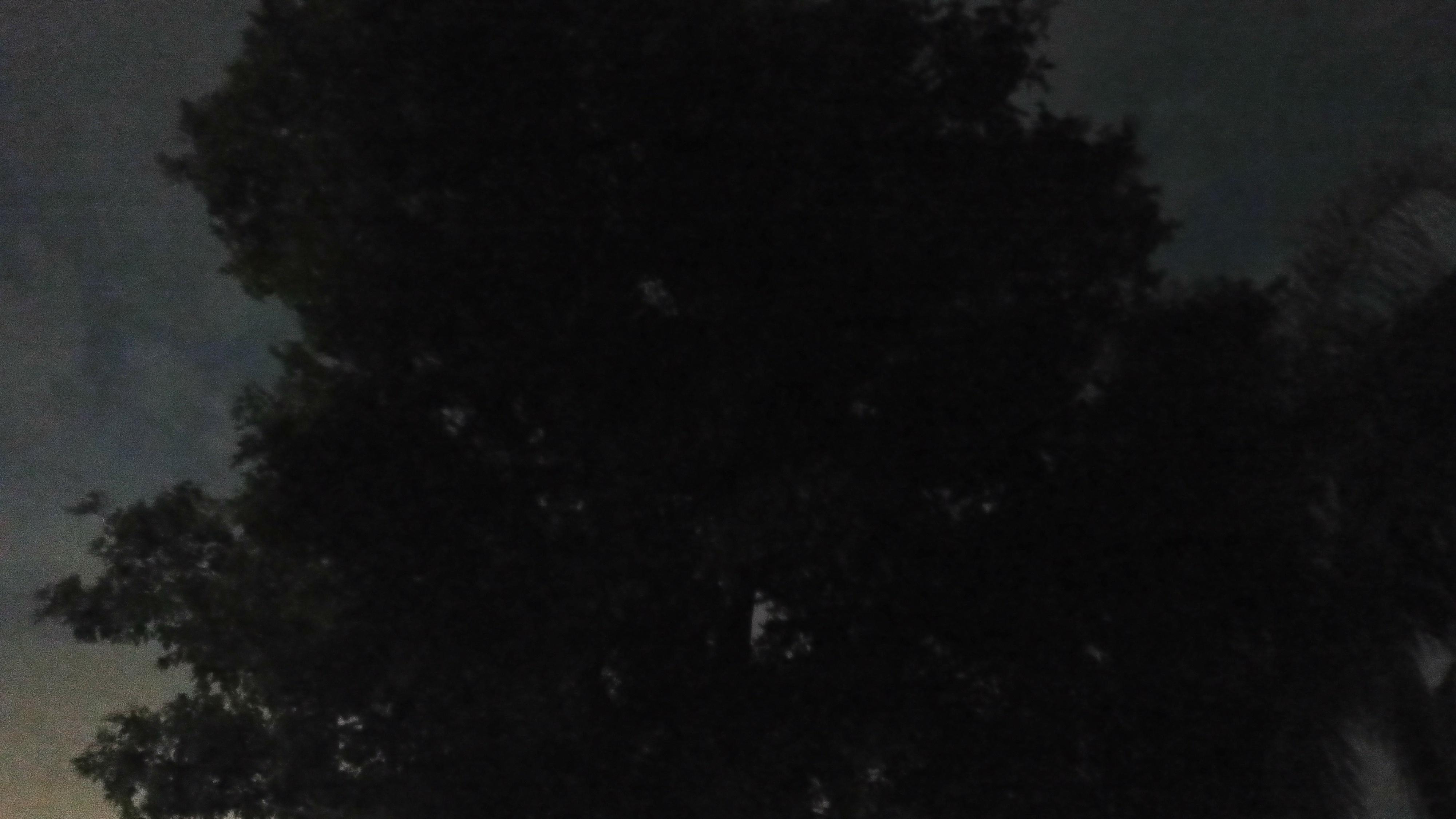 Motorola Edge 20 Fusion Night Mode camera samples
