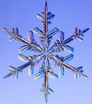 snowflakes, snow crystals, images of snow crystals, what snowflakes look like, snow crystal photographs, what snow looks like, snow flakes pictures, photographing snow crystals
