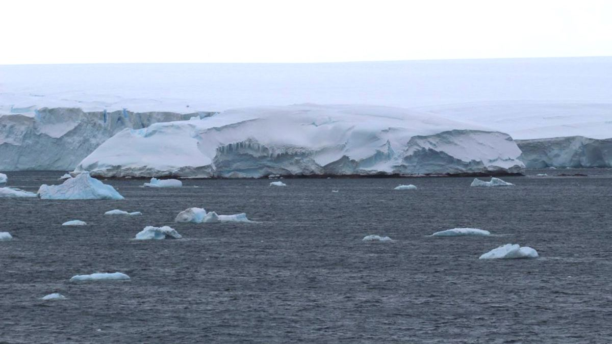 Melting ice in Antarctica reveals new uncharted island - Livescience.com
