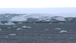 The rocky coast of Sif Island peeks out under a mound of Antarctic ice.