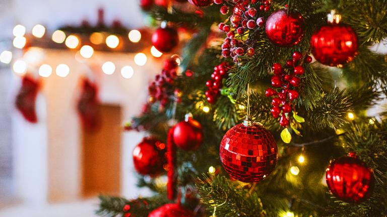 2020 Christmas tree trend
