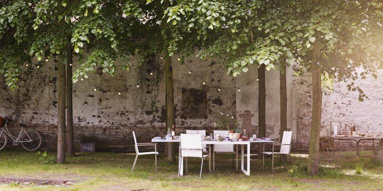 Garden privacy ideas